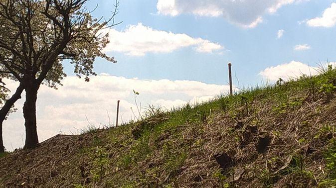 Krmelec - u učiliště Pachové ohradníky při vjezdu do Kunic od Stránčic 40bad10165